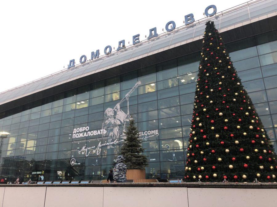 ドモジェドヴォ空港, 代理出産